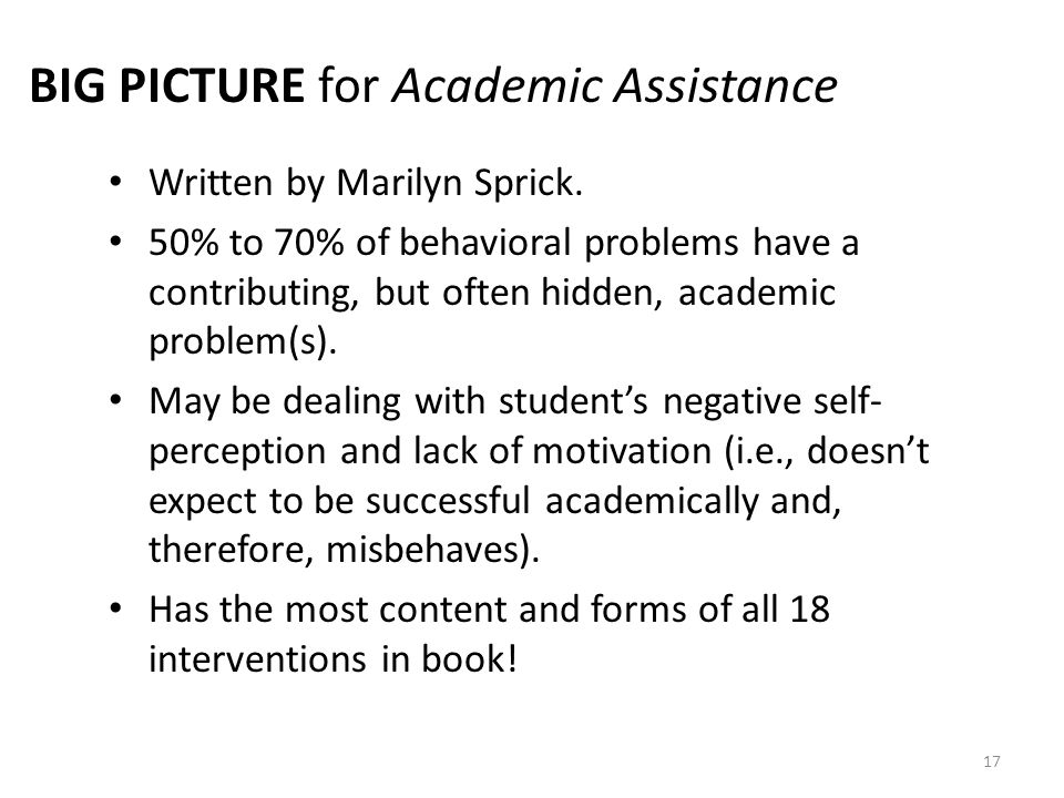 BIG PICTURE for Academic Assistance
