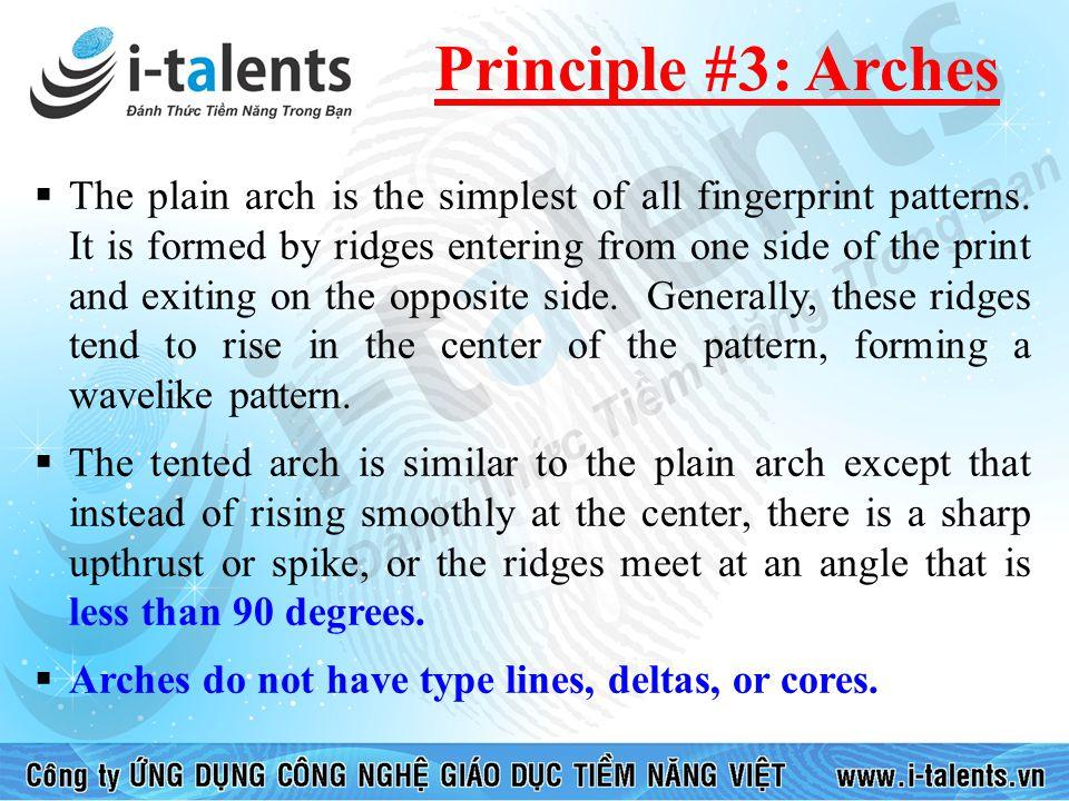 Principle #3: Arches