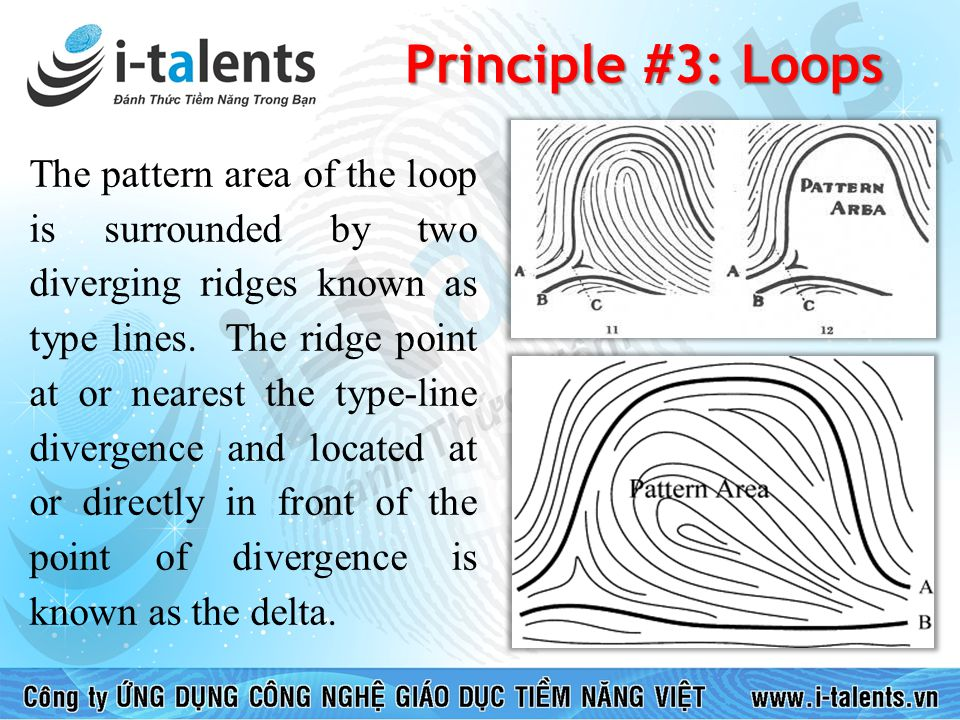 Principle #3: Loops