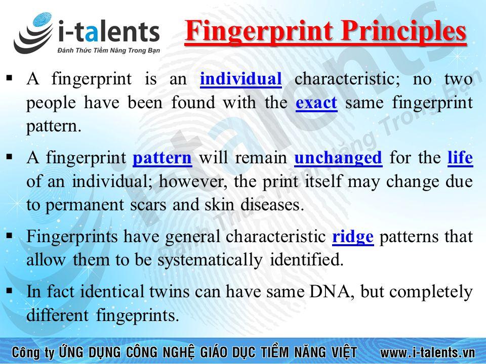 Fingerprint Principles