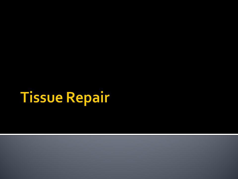 Tissue Repair