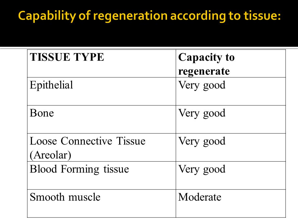 Capability of regeneration according to tissue: