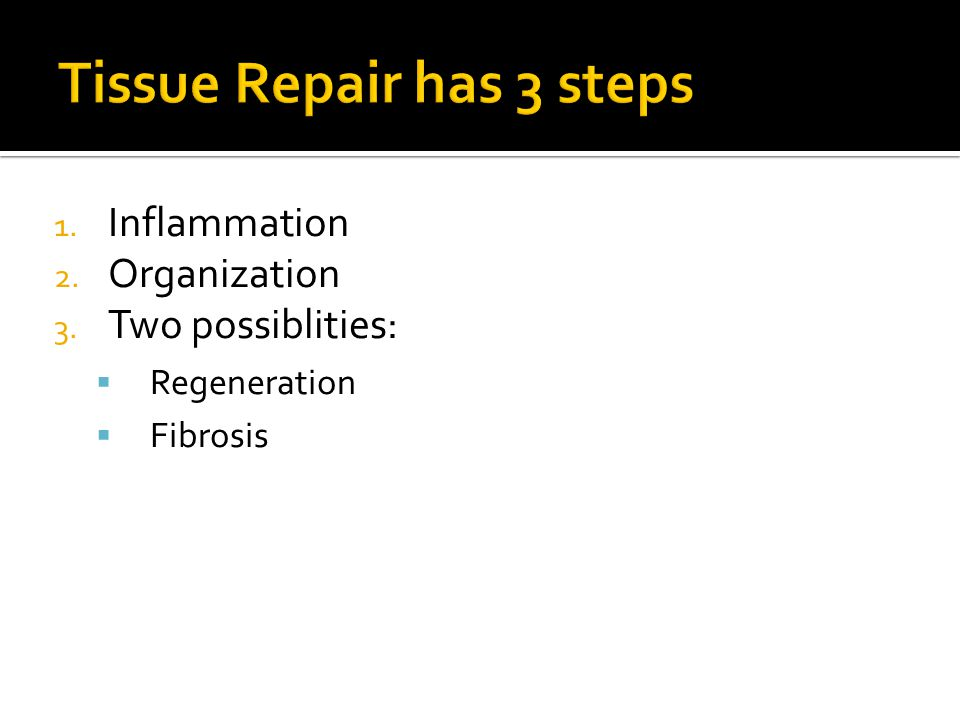 Tissue Repair has 3 steps