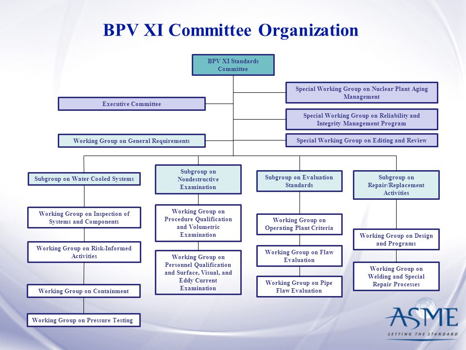 BPV XI Committee Organization