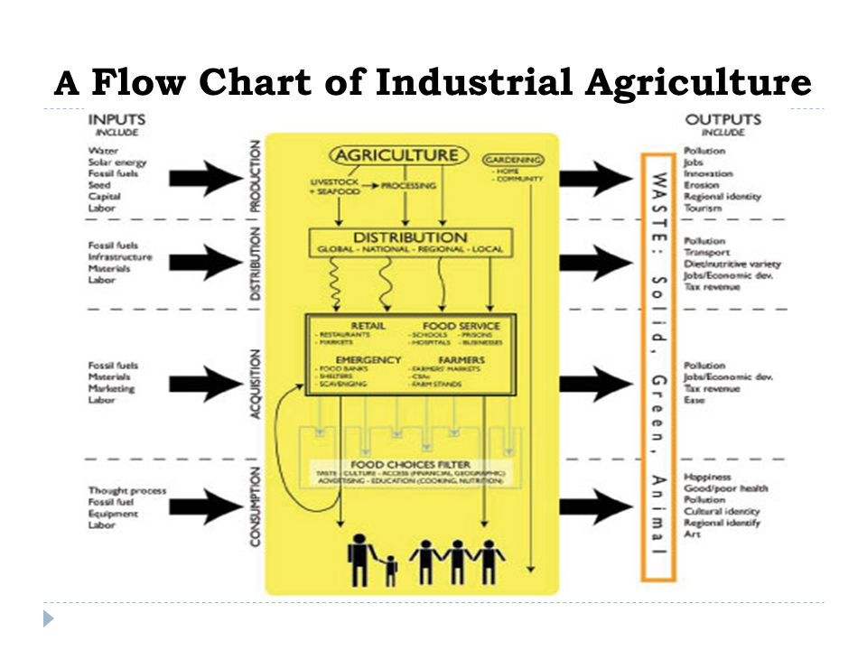A Flow Chart of Industrial Agriculture
