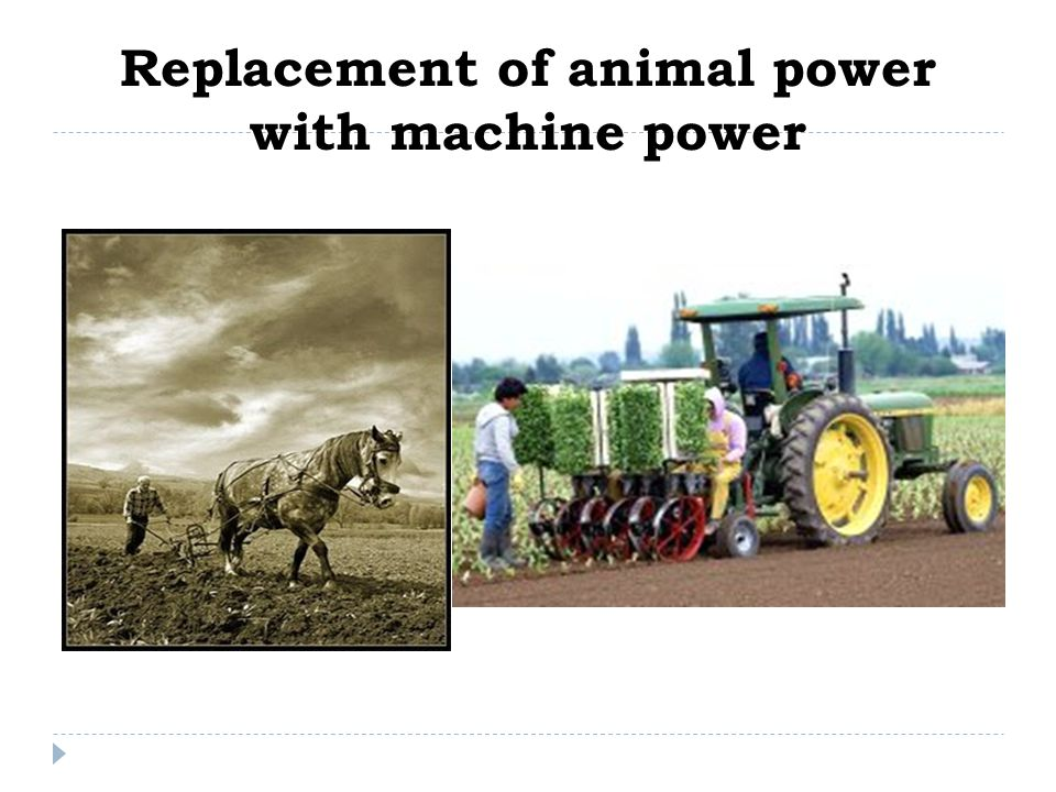 Replacement of animal power with machine power