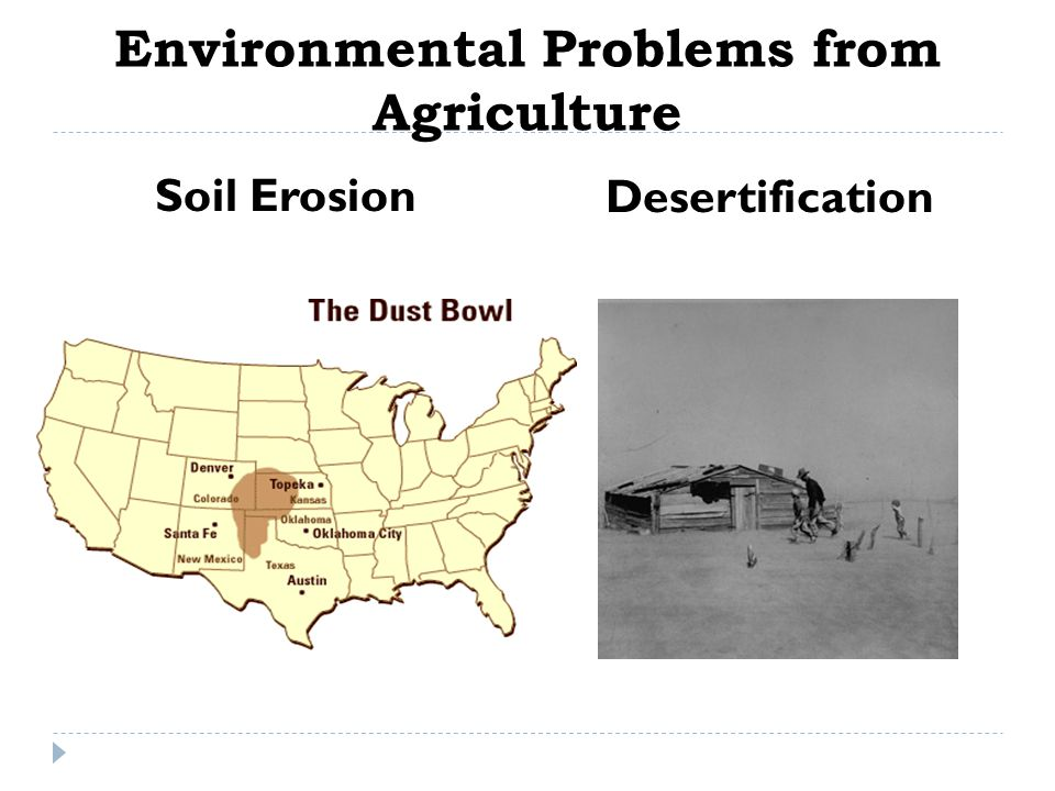 Environmental Problems from Agriculture