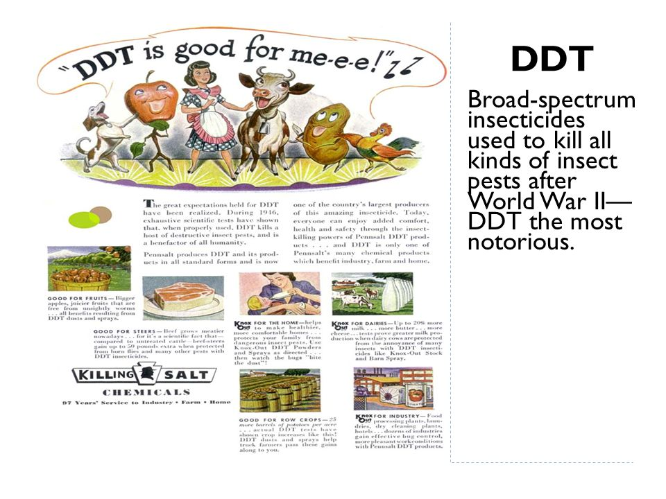 DDT Broad-spectrum insecticides used to kill all kinds of insect pests after World War II— DDT the most notorious.