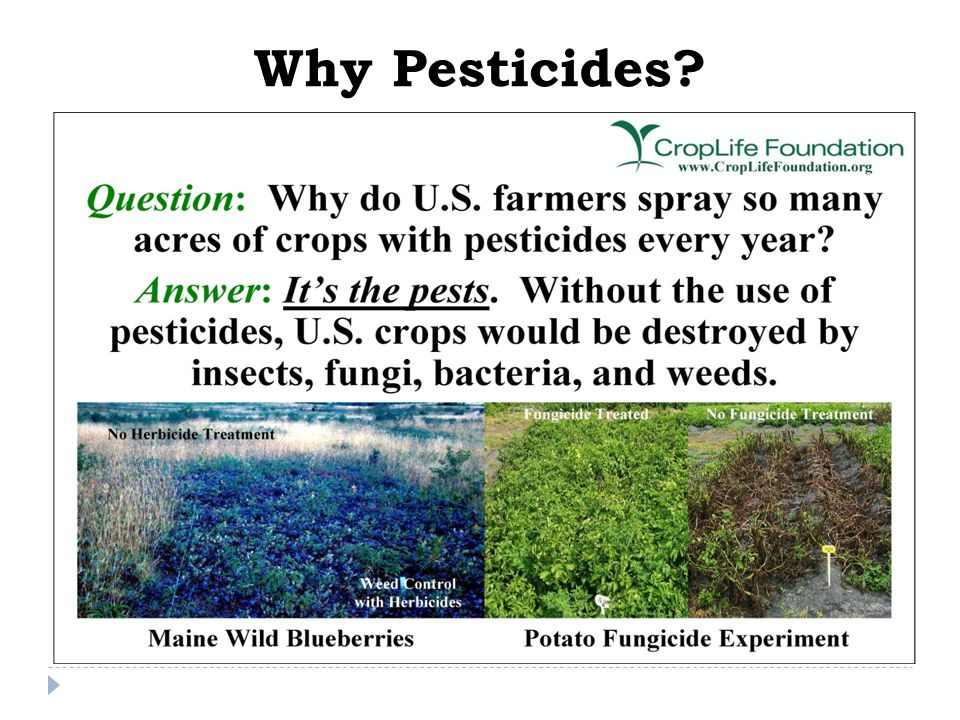 Why Pesticides