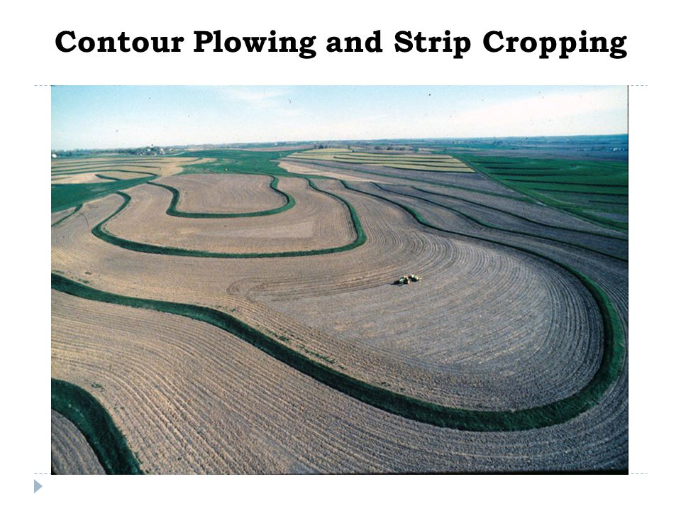 Contour Plowing and Strip Cropping
