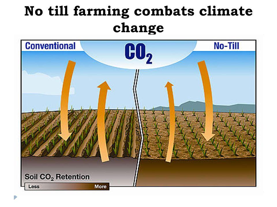 No till farming combats climate change