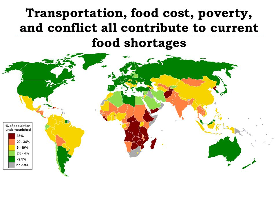 Transportation, food cost, poverty, and conflict all contribute to current food shortages