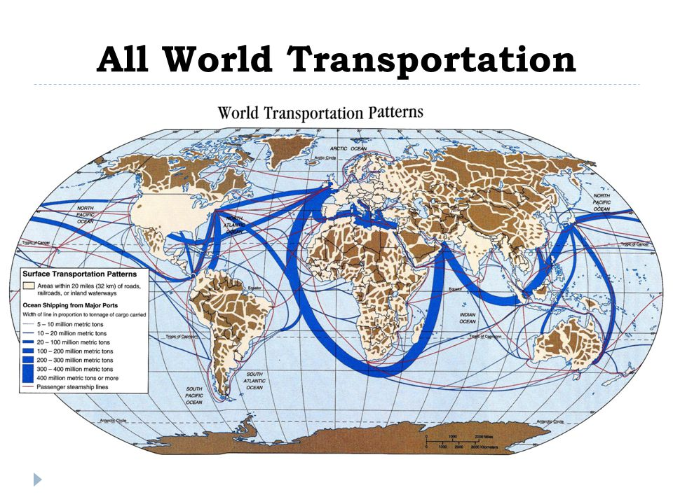 All World Transportation
