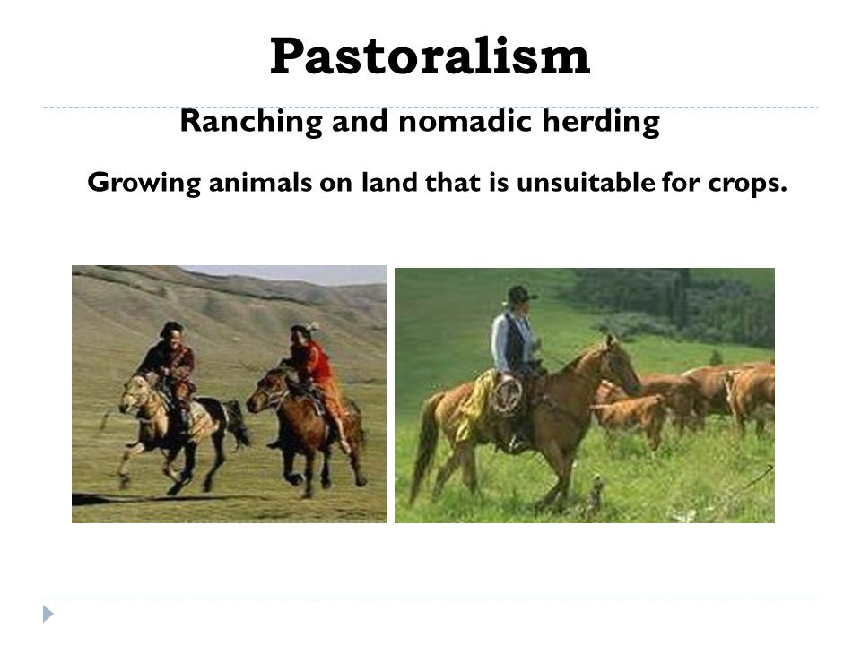 Pastoralism Ranching and nomadic herding