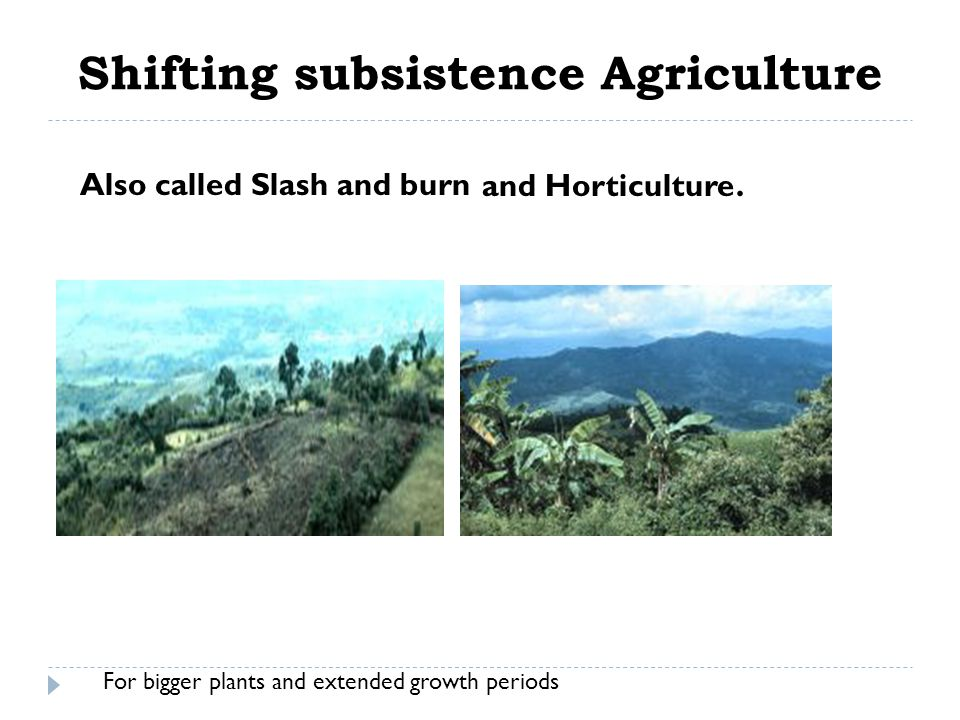 Shifting subsistence Agriculture