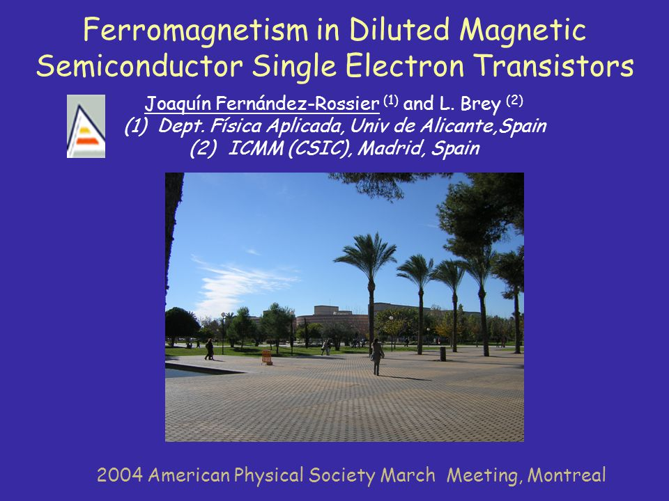 Ferromagnetism in Diluted Magnetic Semiconductor Single Electron Transistors