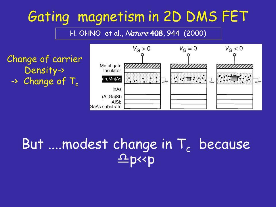 Gating magnetism in 2D DMS FET