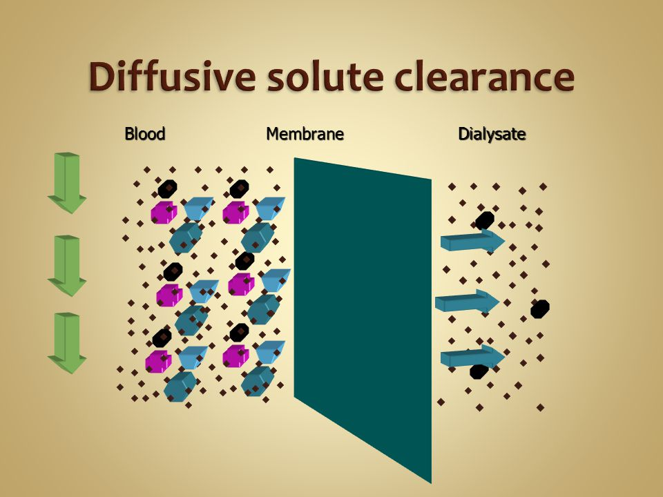 Diffusive solute clearance