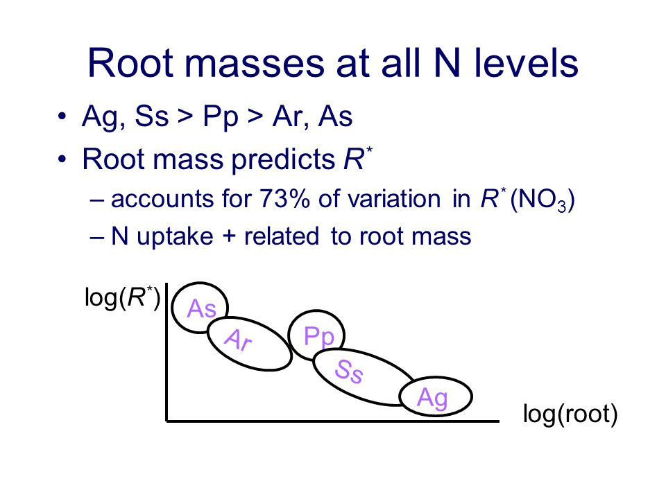 Root masses at all N levels