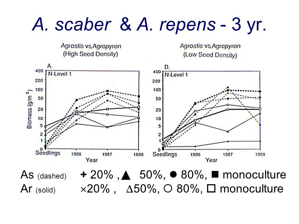 A. scaber & A. repens - 3 yr. As (dashed) + 20% , 50%,  80%,  monoculture.