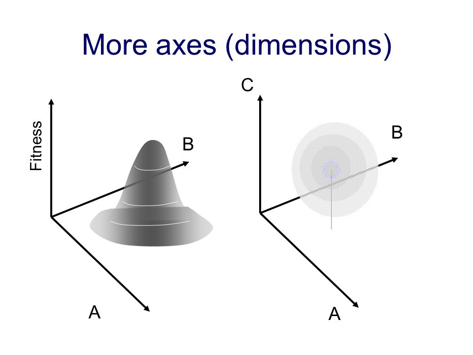 More axes (dimensions)