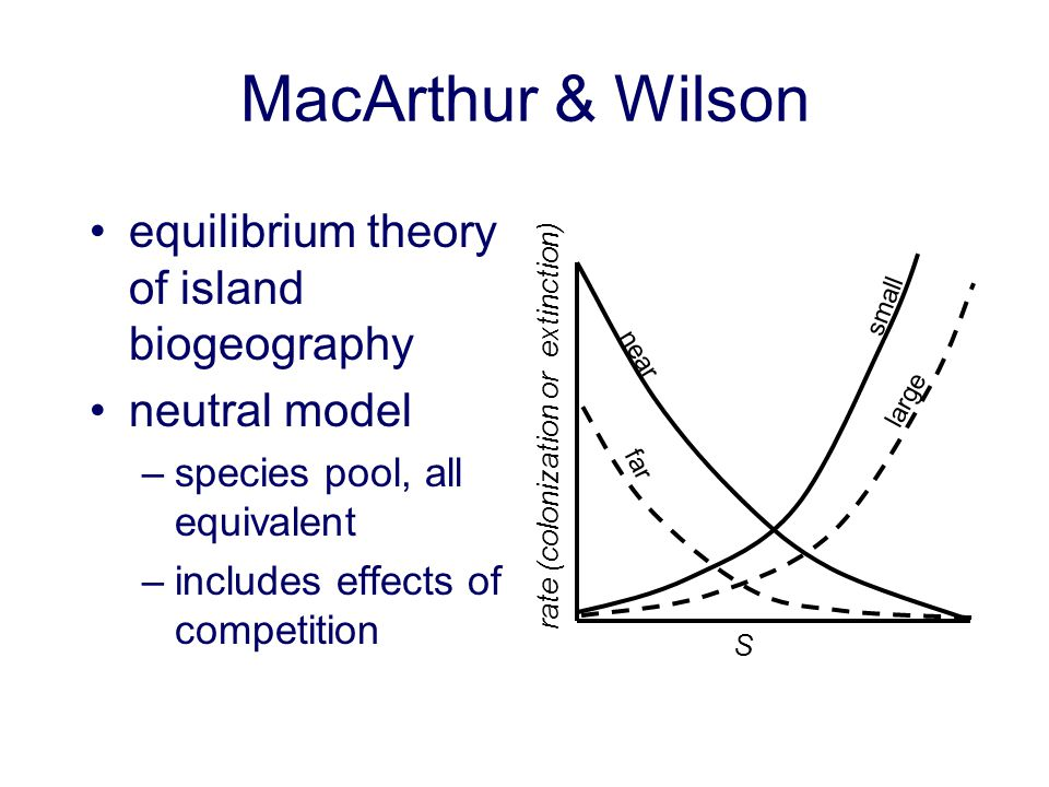 MacArthur & Wilson equilibrium theory of island biogeography