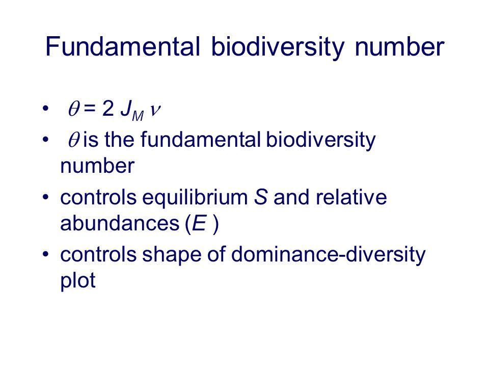 Fundamental biodiversity number