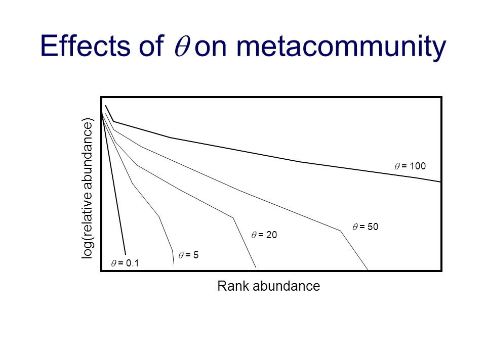 Effects of q on metacommunity