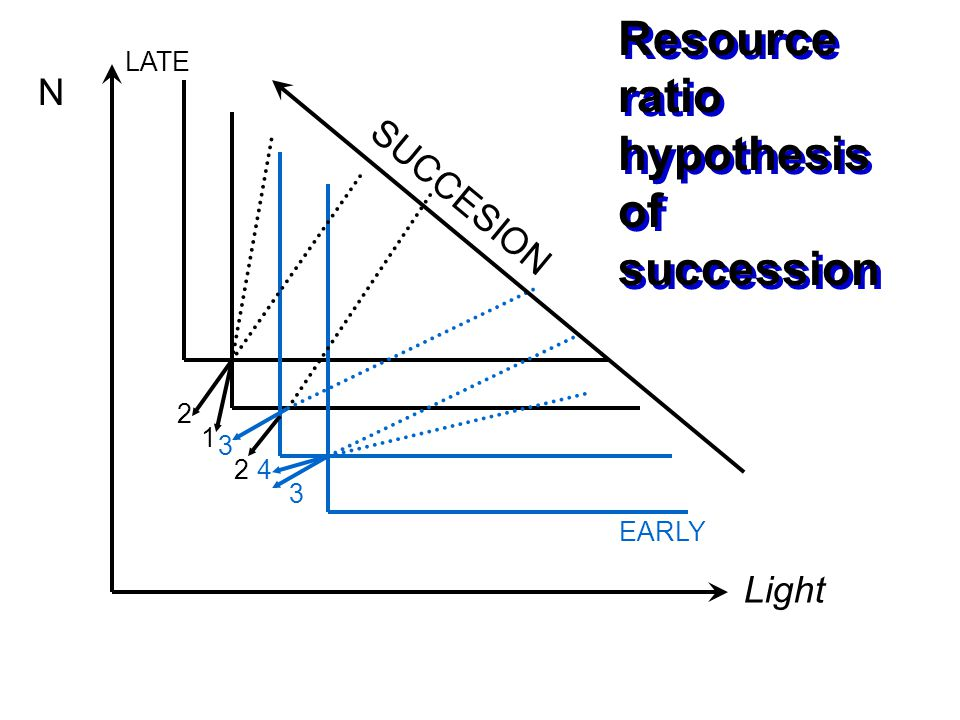 Resource ratio hypothesis of succession