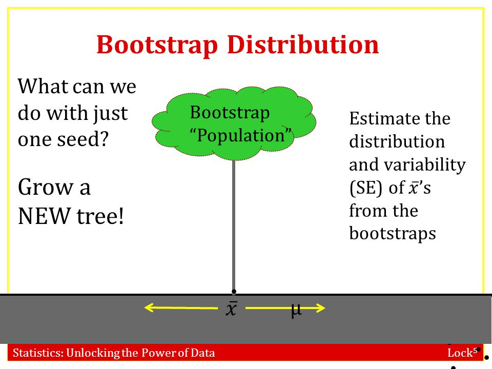 Bootstrap Distribution