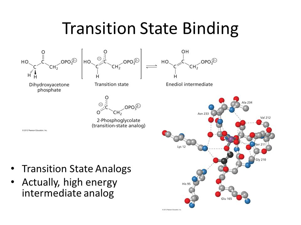 Transition State Binding