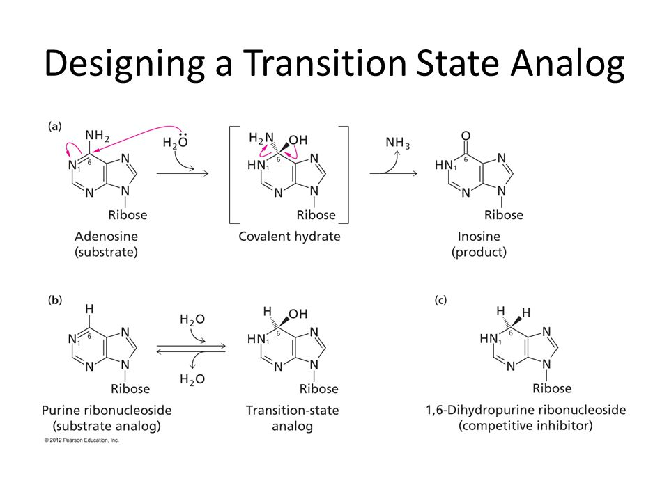 Designing a Transition State Analog
