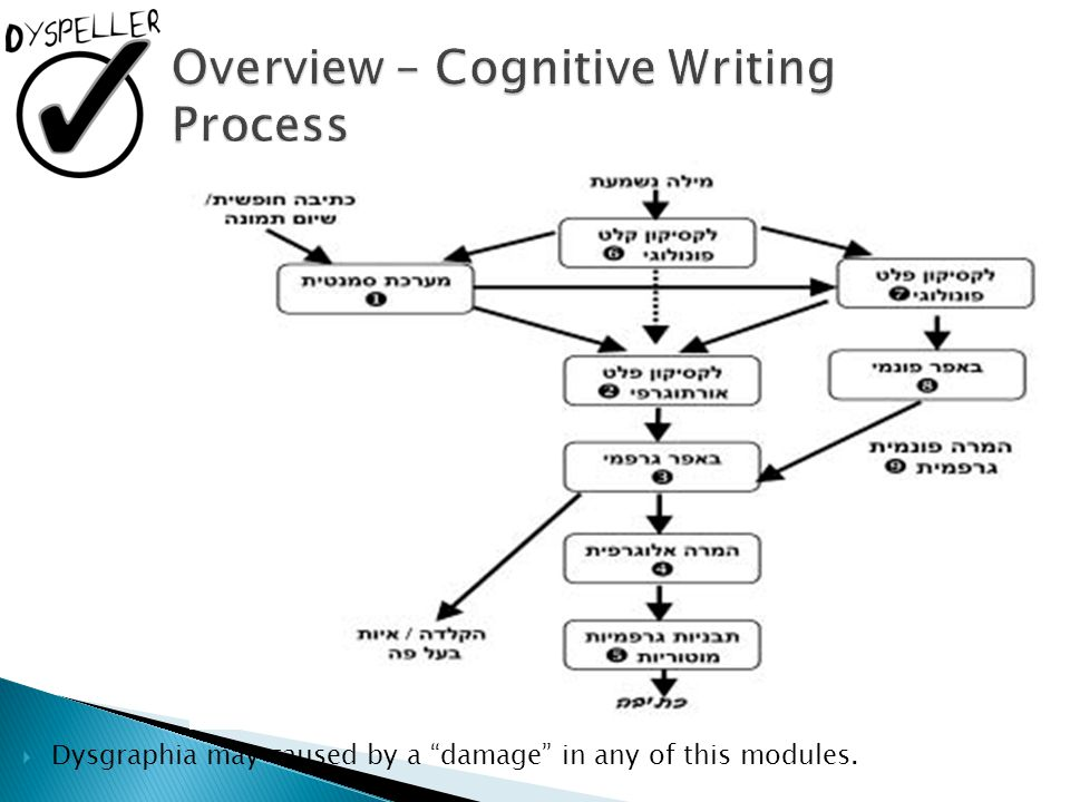 Overview – Cognitive Writing Process