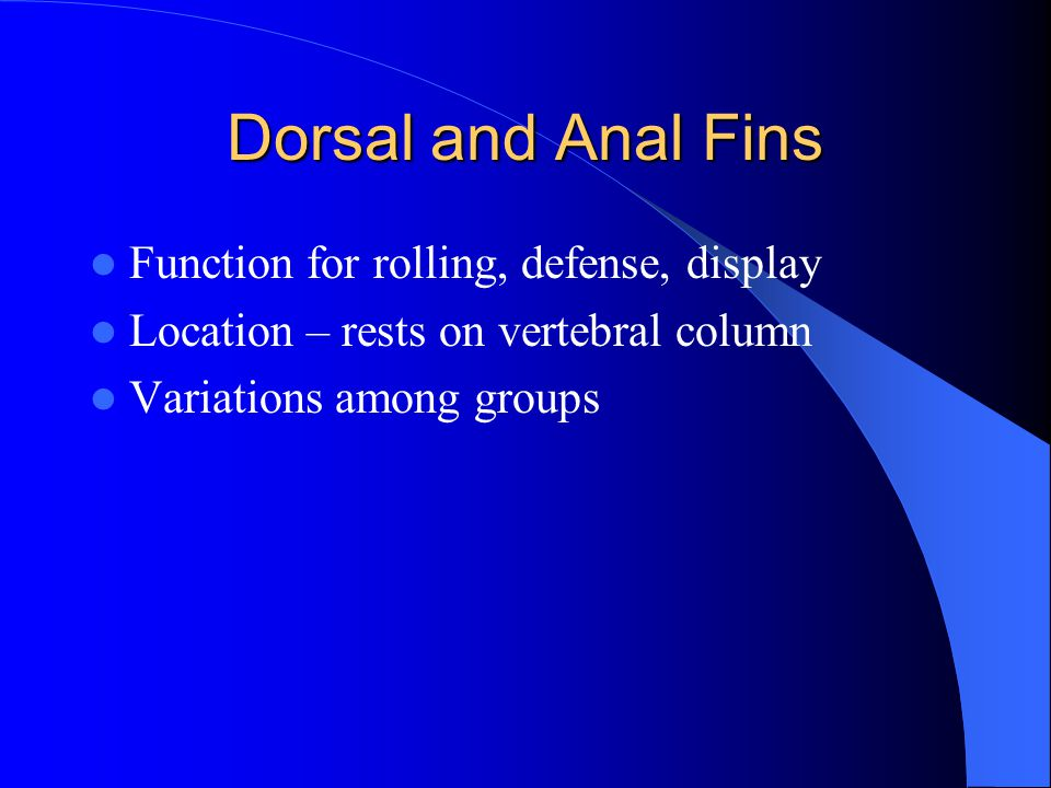 Dorsal and Anal Fins Function for rolling, defense, display
