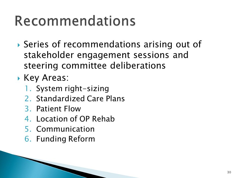 Recommendations Series of recommendations arising out of stakeholder engagement sessions and steering committee deliberations.
