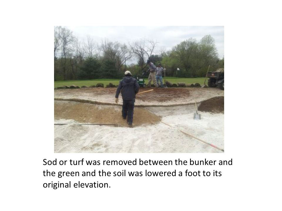 Sod or turf was removed between the bunker and the green and the soil was lowered a foot to its original elevation.
