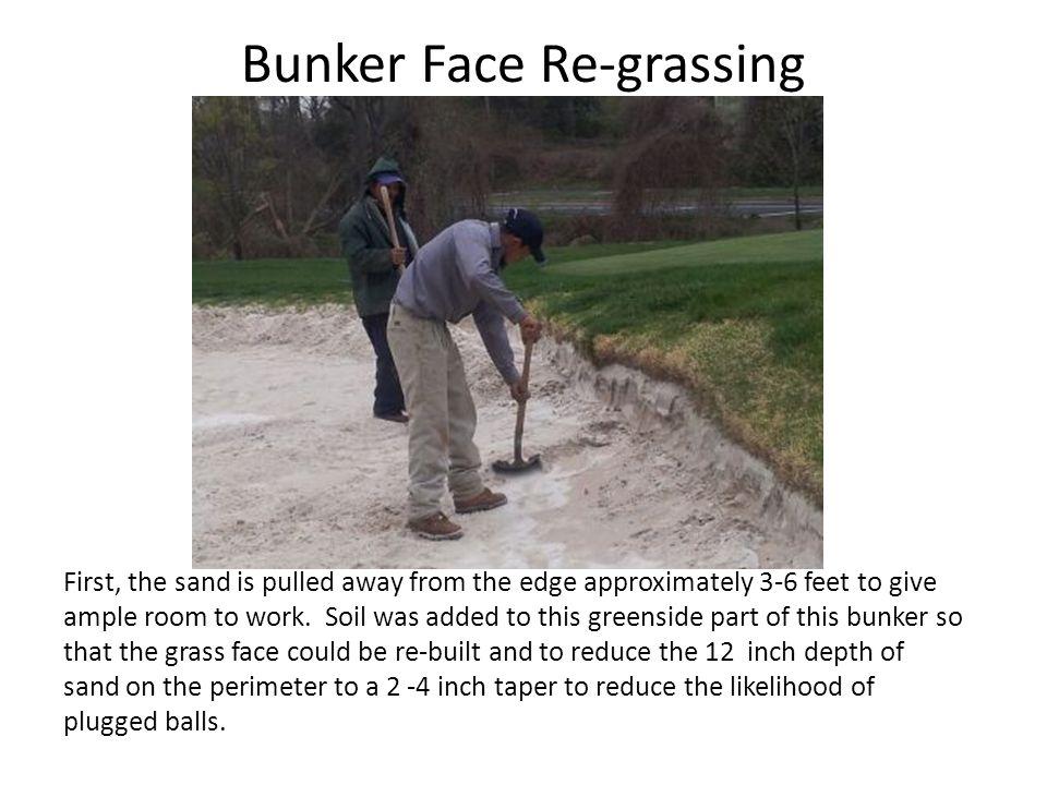 Bunker Face Re-grassing