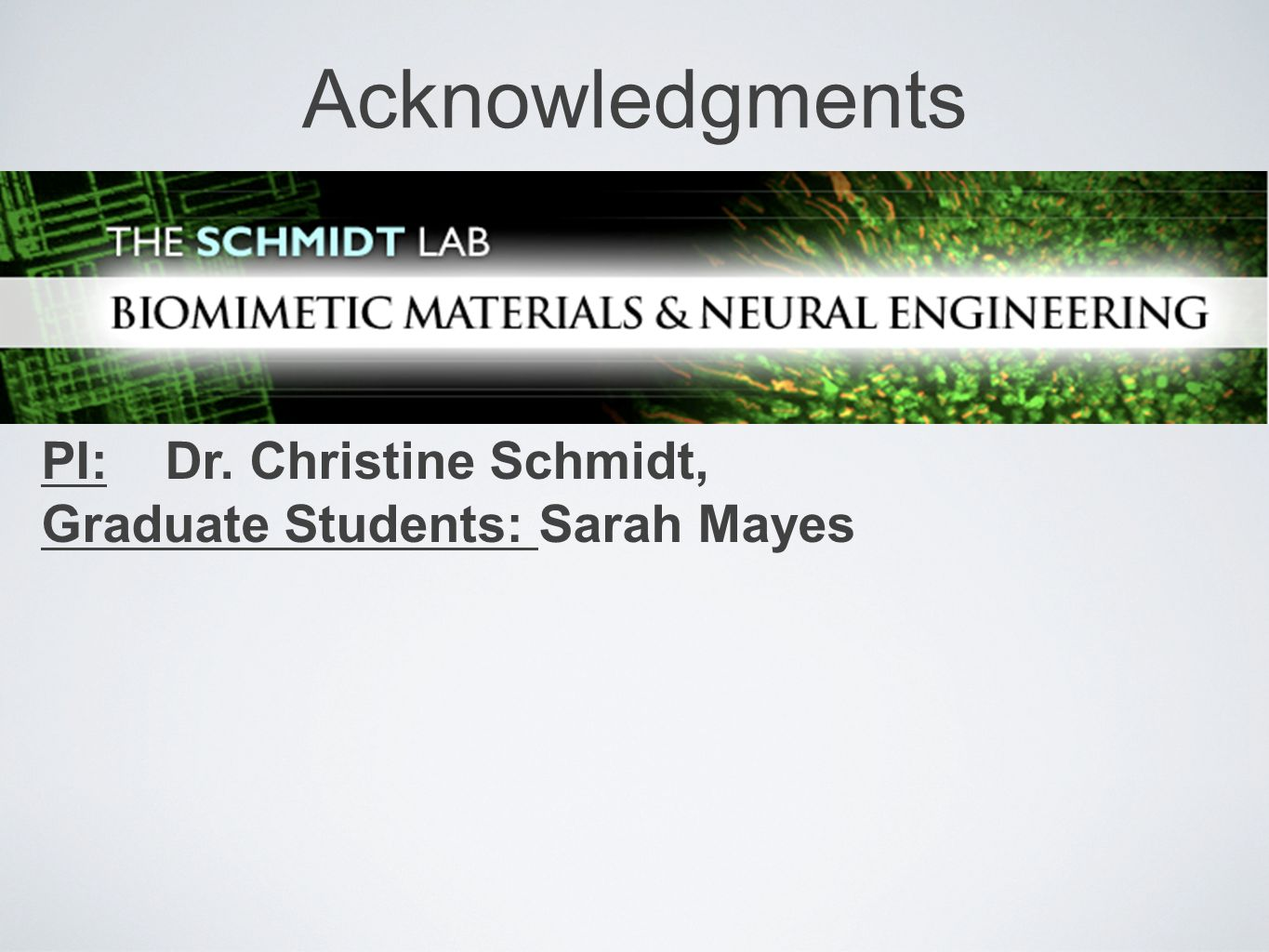 Acknowledgments PI: Dr. Christine Schmidt,