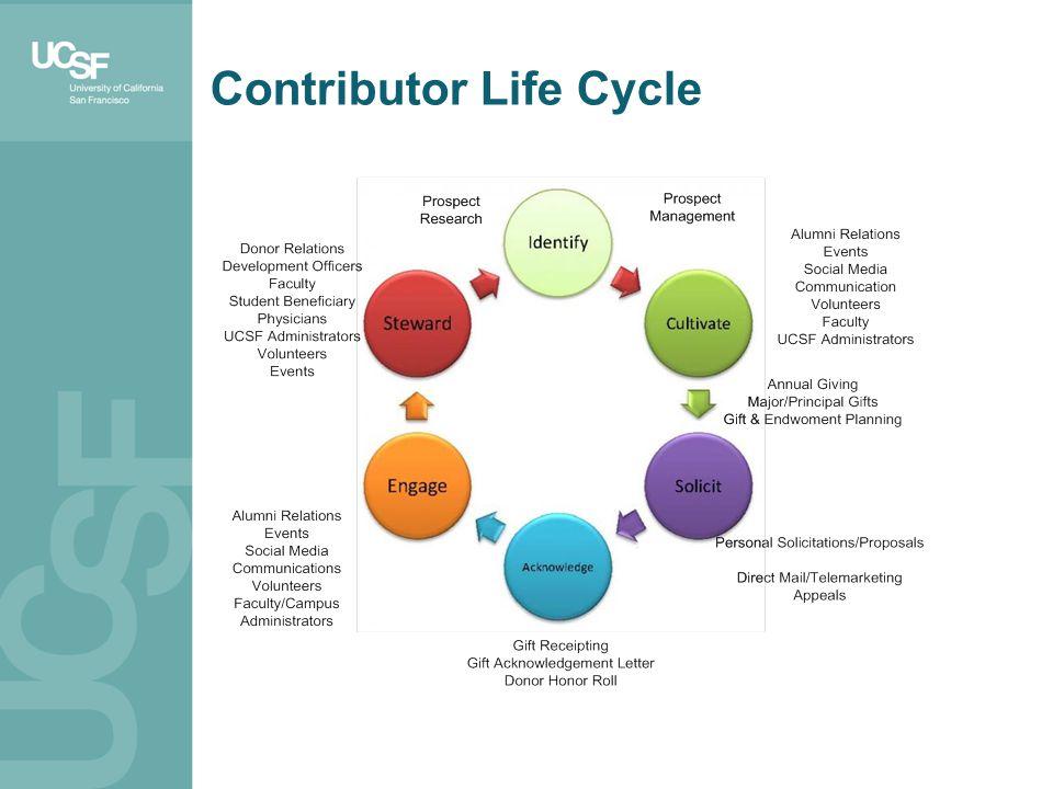 Contributor Life Cycle