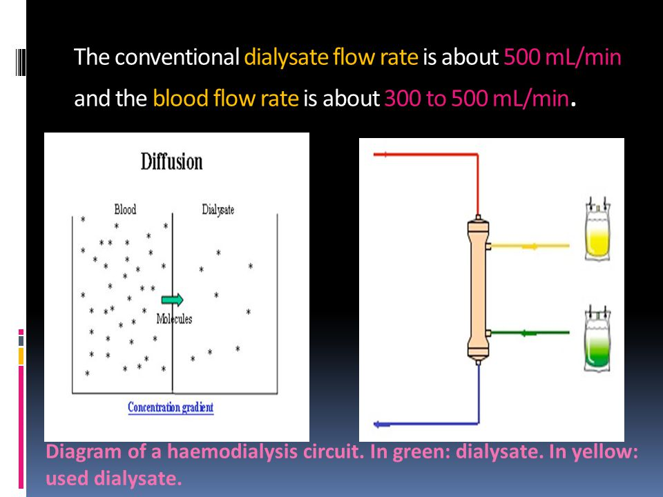 The conventional dialysate flow rate is about 500 mL/min and the blood flow rate is about 300 to 500 mL/min.
