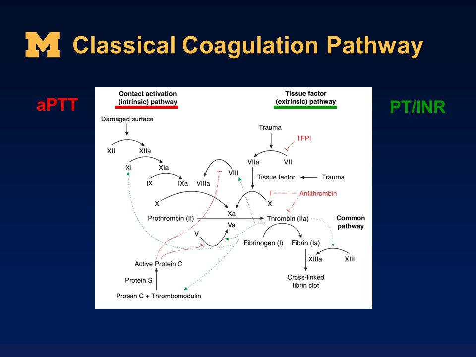 Classical Coagulation Pathway