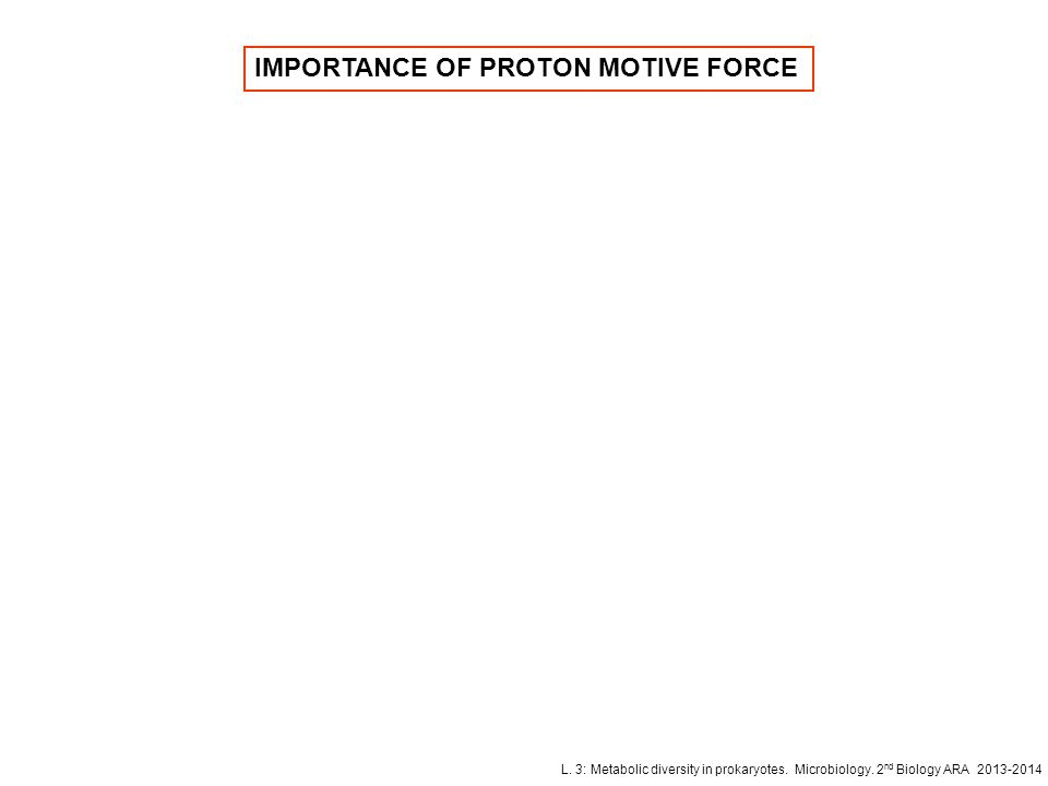 IMPORTANCE OF PROTON MOTIVE FORCE