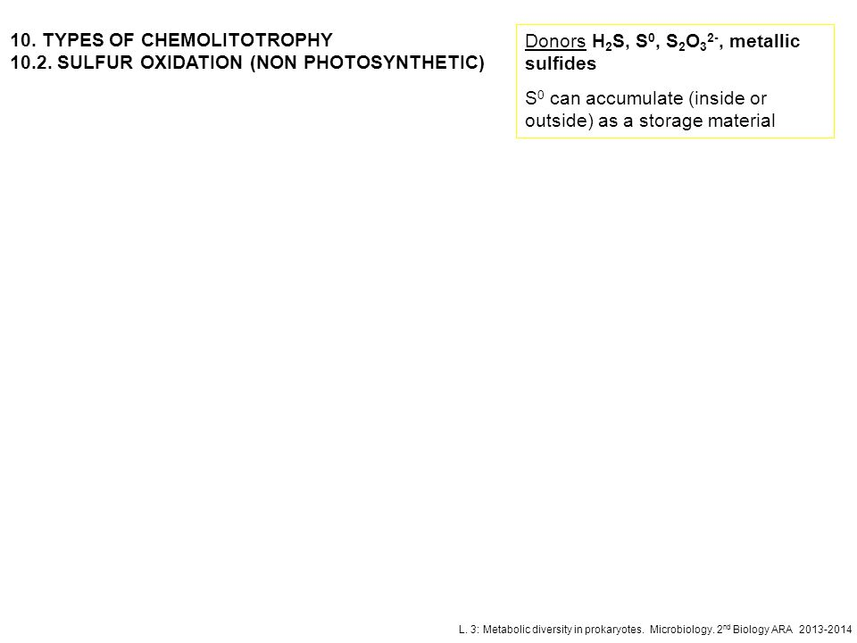 10. TYPES OF CHEMOLITOTROPHY