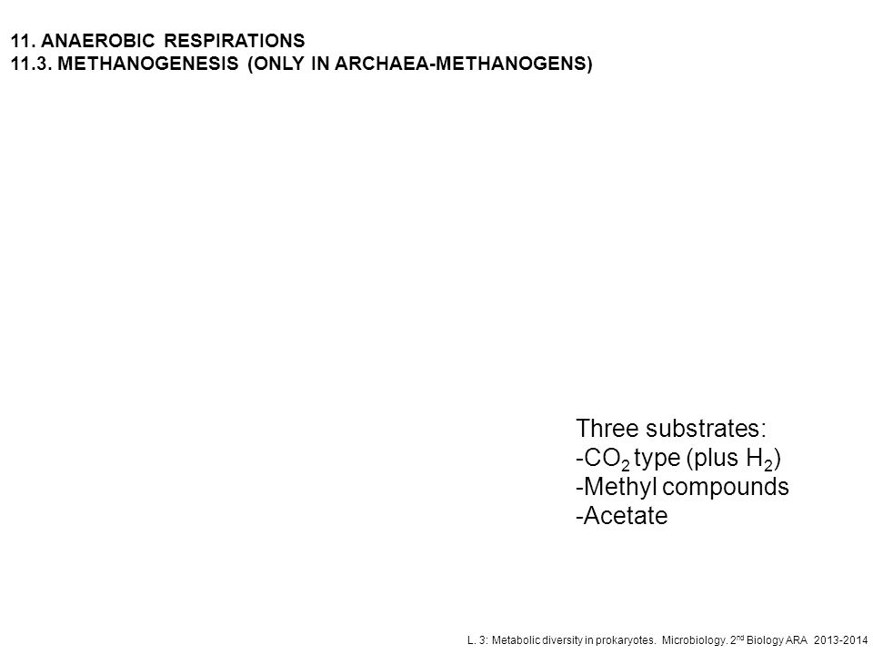 Three substrates: CO2 type (plus H2) Methyl compounds Acetate