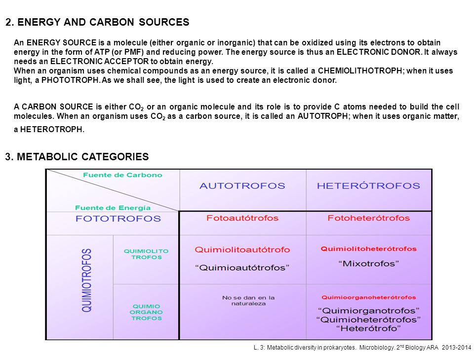 2. ENERGY AND CARBON SOURCES