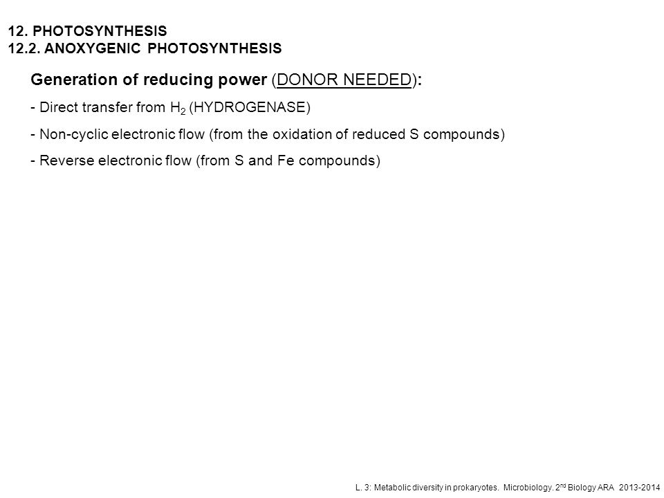 Generation of reducing power (DONOR NEEDED):