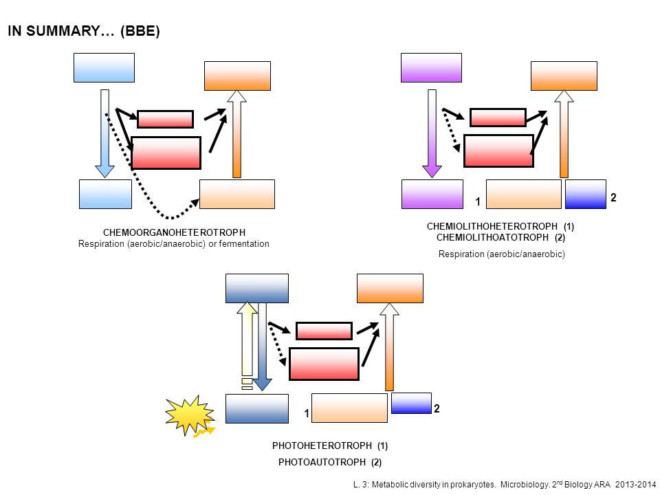 CHEMIOLITHOHETEROTROPH (1) CHEMIOLITHOATOTROPH (2)