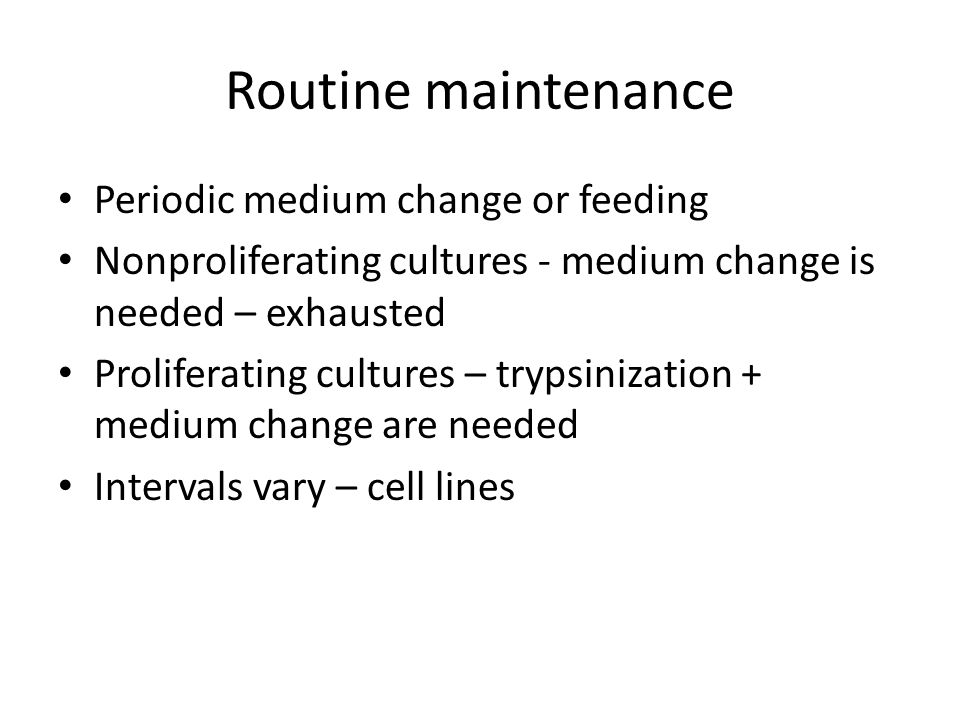 Routine maintenance Periodic medium change or feeding