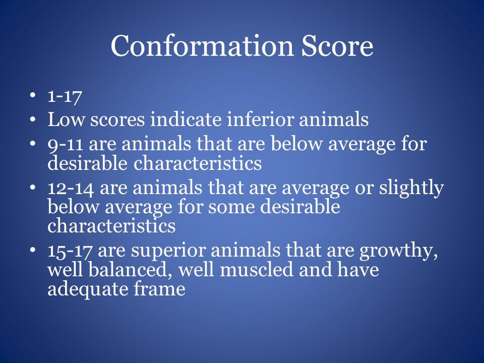 Conformation Score 1-17 Low scores indicate inferior animals