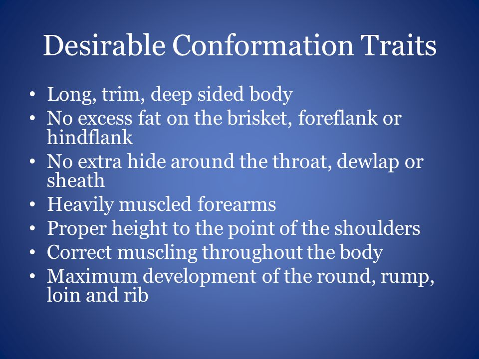 Desirable Conformation Traits